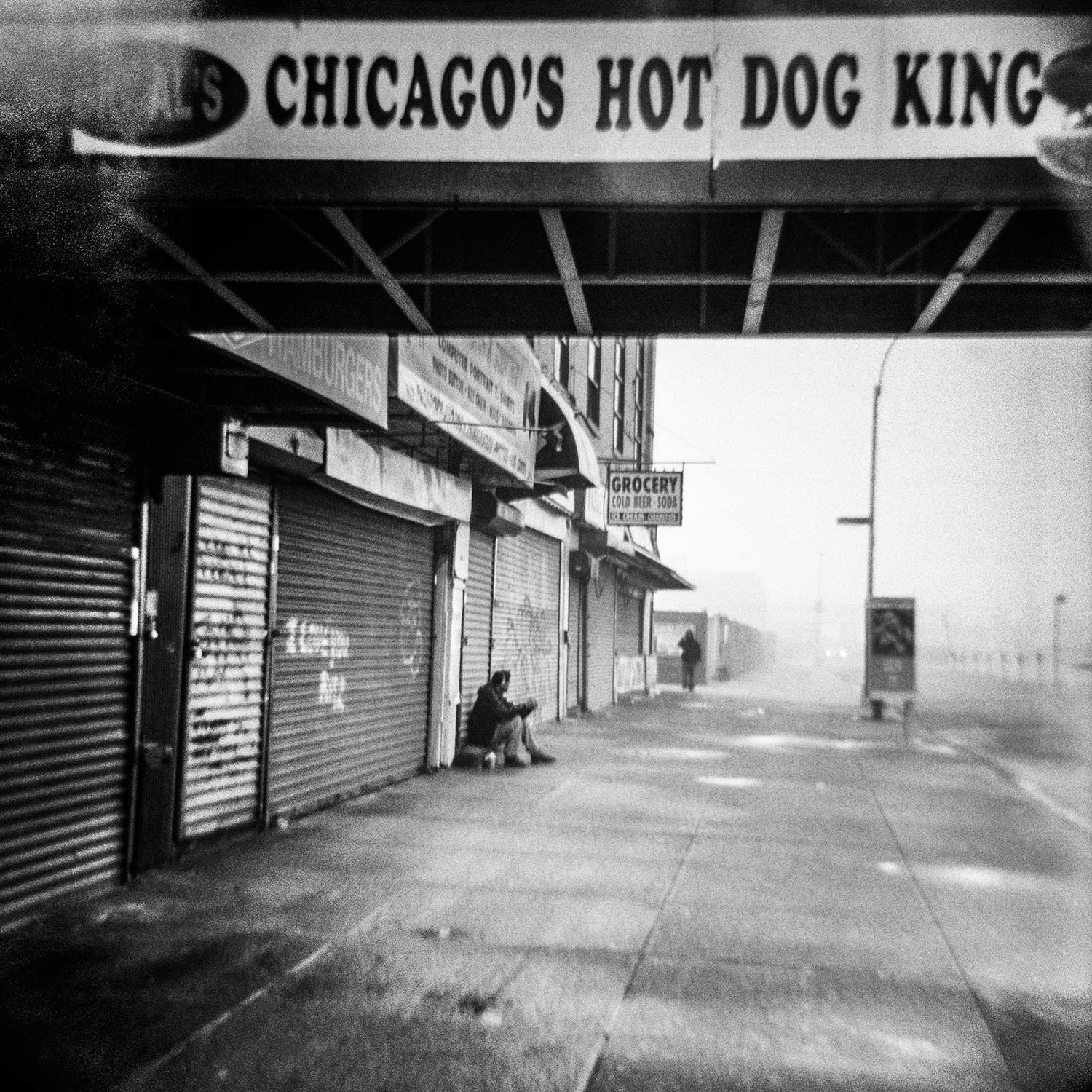 Chicago Hot Dog King - Stefanie Dworkin